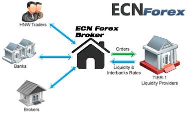 Классификация брокеров валютного рынка FOREX 1